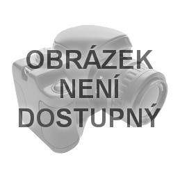 spirometr Spirosound - vyhodnovací obrazovka